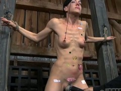 Bounded beauty waits be advisable for her brutal punishment