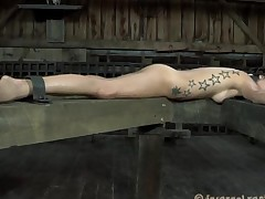 Restrained gal made to submit to stud horny demands